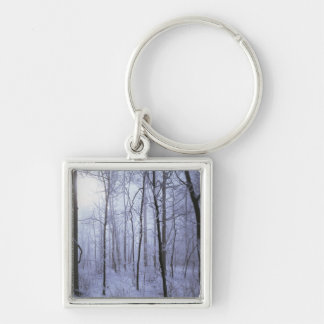 USA, Virginia, Richard Thompson Wildlife Area. Keychain