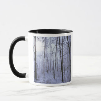 USA, Virginia, Richard Thompson Wildlife Area. Mug