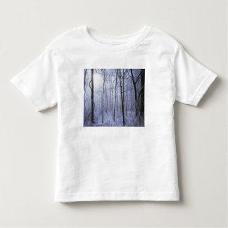 USA, Virginia, Richard Thompson Wildlife Area. T-shirts