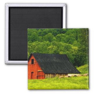 USA, Virginia, Shenandoah National Park, 2 Fridge Magnet