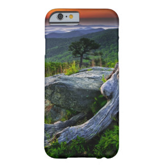 USA, Virginia, Shenandoah National Park. Barely There iPhone 6 Case