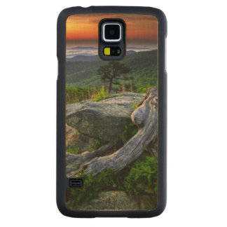 USA, Virginia, Shenandoah National Park. Carved Maple Galaxy S5 Case