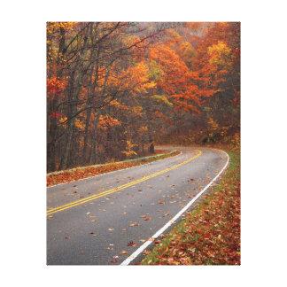 USA, Virginia, Shenandoah National Park, Skyline Canvas Print