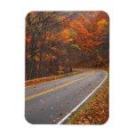 USA, Virginia, Shenandoah National Park, Skyline Vinyl Magnets