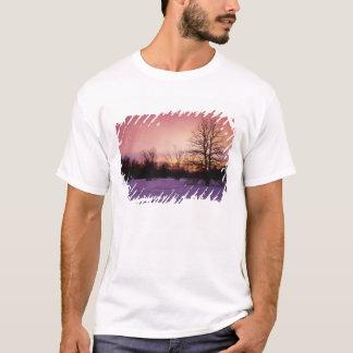 USA, Virginia, Shenandoah National Park, T-Shirt