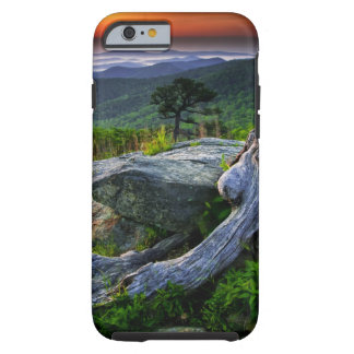 USA, Virginia, Shenandoah National Park. Tough iPhone 6 Case