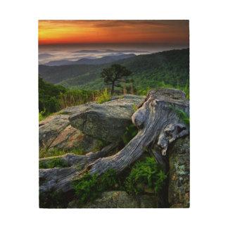 USA, Virginia, Shenandoah National Park. Wood Canvases