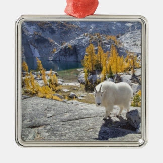 USA, WA, Alpine Lakes WIlderness Enchantments. Metal Ornament