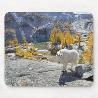 USA, WA, Alpine Lakes WIlderness Enchantments. Mouse Pad