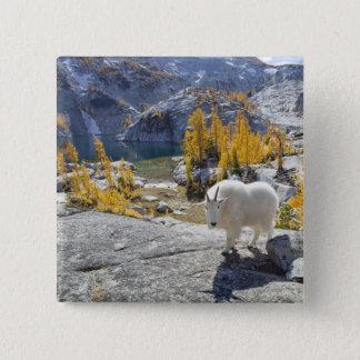 USA, WA, Alpine Lakes WIlderness Enchantments. Pinback Button