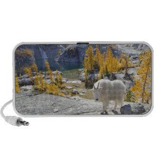 USA, WA, Alpine Lakes WIlderness Enchantments. Speaker System