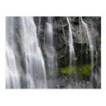 USA, WA, Mt. Rainier NP, Narada Falls Postcard
