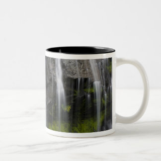 USA, WA, Mt. Rainier NP, Narada Falls Two-Tone Coffee Mug