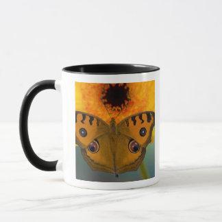 USA, WA, Sammamish, Tropical Butterfy 2 Mug