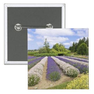 USA, WA, Sequim, Purple Haze Lavender Farm 2 Inch Square Button