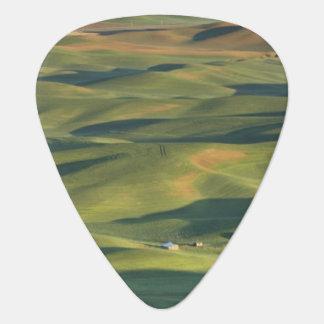 USA, WA, Whitman Co., Palouse Farm Fields From Guitar Pick