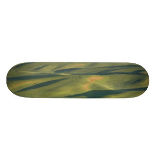 USA, WA, Whitman Co., Palouse Farm Fields From Skateboard