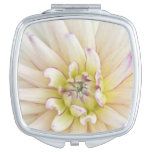 USA, Washington, Bellevue, Bellevue Botanical 2 Compact Mirror