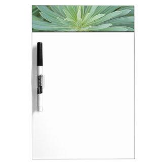 USA, Washington, Bellevue, Bellevue Botanical 4 Dry-Erase Whiteboard