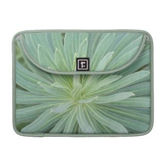 USA, Washington, Bellevue, Bellevue Botanical 4 Sleeve For MacBook Pro