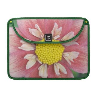 USA, Washington, Bellevue, Bellevue Botanical Sleeves For MacBooks
