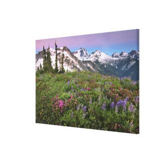 USA, Washington, Cascade Mountains, North Canvas Print