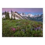 USA, Washington, Cascade Mountains, North Greeting Card