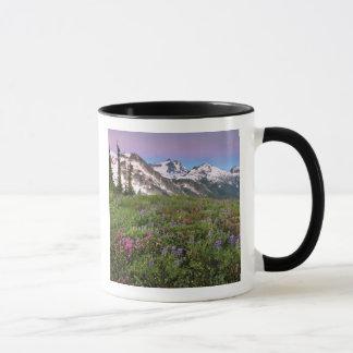 USA, Washington, Cascade Mountains, North Mug