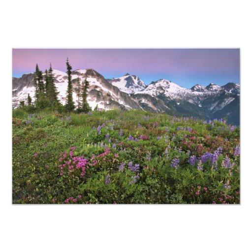 USA, Washington, Cascade Mountains, North Photo Print