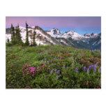 USA, Washington, Cascade Mountains, North Postcard