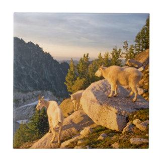 USA, Washington, Cascade Range 4 Ceramic Tile