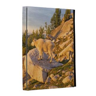 USA, Washington, Cascade Range 4 iPad Folio Cover