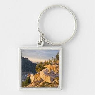 USA, Washington, Cascade Range 4 Keychain