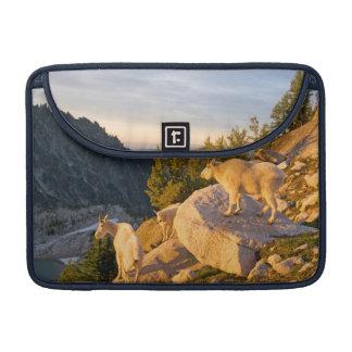 USA, Washington, Cascade Range 4 MacBook Pro Sleeve