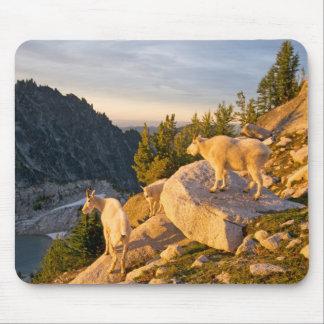 USA, Washington, Cascade Range 4 Mouse Pad