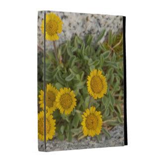 USA, Washington, Cascade Range 5 iPad Folio Cover