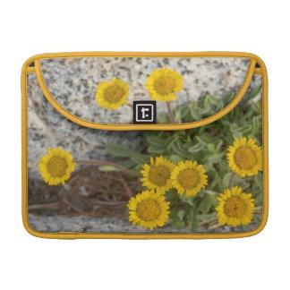 USA, Washington, Cascade Range 5 MacBook Pro Sleeve