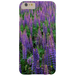 USA, Washington, Clallam County, Lupine Barely There iPhone 6 Plus Case