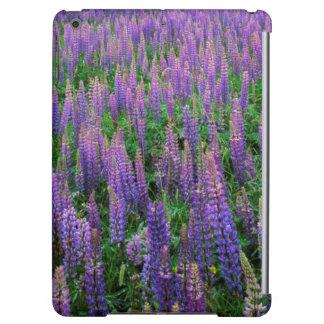 USA, Washington, Clallam County, Lupine iPad Air Cover