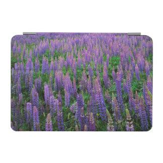 USA, Washington, Clallam County, Lupine iPad Mini Cover