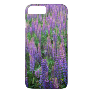 USA, Washington, Clallam County, Lupine iPhone 8 Plus/7 Plus Case