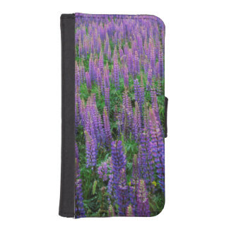 USA, Washington, Clallam County, Lupine iPhone SE/5/5s Wallet
