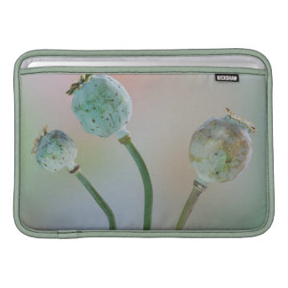 USA, Washington. Close-Up Of Colorful Poppy Seed Sleeve For MacBook Air