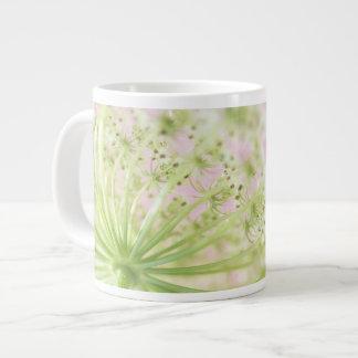 USA, Washington, Close-up of cow parsnip Giant Coffee Mug