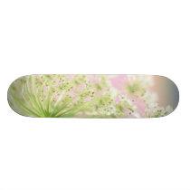 USA, Washington, Close-up of cow parsnip Skateboard Deck