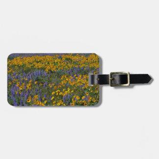 USA, Washington, Columbia River Gorge National Bag Tag