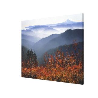 USA, Washington, Columbia River Gorge National Canvas Print