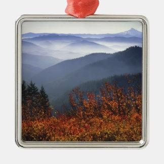 USA, Washington, Columbia River Gorge National Metal Ornament