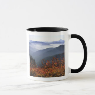 USA, Washington, Columbia River Gorge National Mug