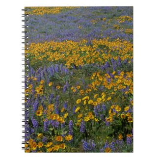 USA, Washington, Columbia River Gorge National Notebook